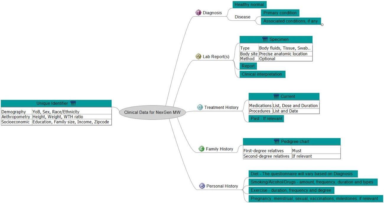 metadata model chart