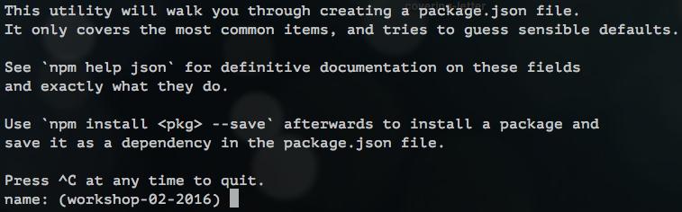 starting npm init