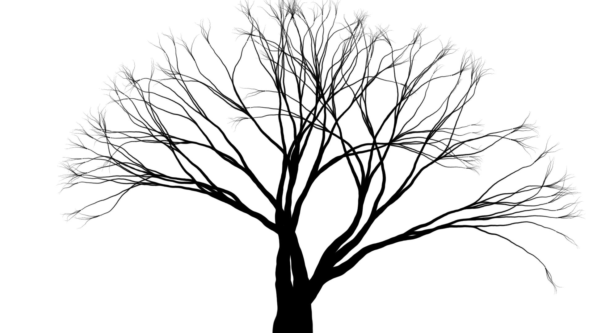A tree picture