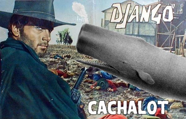 https://raw.github.com/noripyt/django-cachalot/master/django-cachalot.jpg