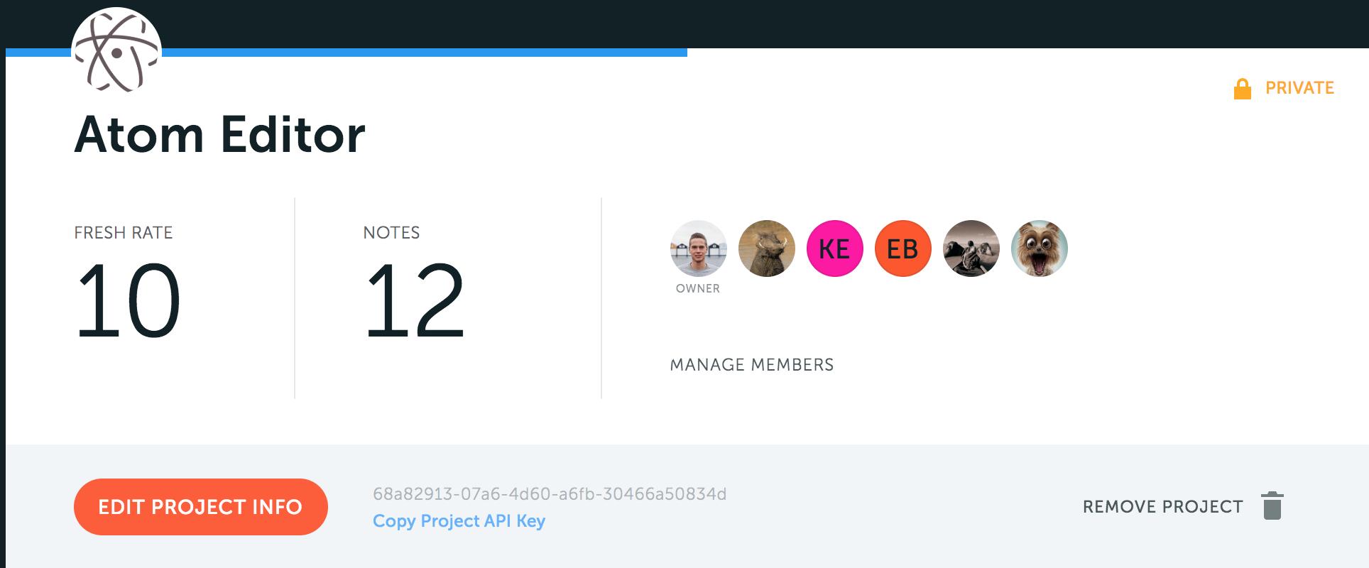 Project API Key screenshot