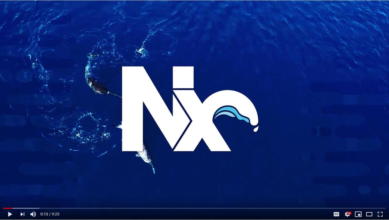 Nx - Quick Start Videos