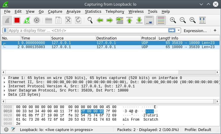 Captured UDP traffic from the Echo Server and Echo Client