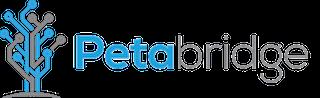 Petabridge logo