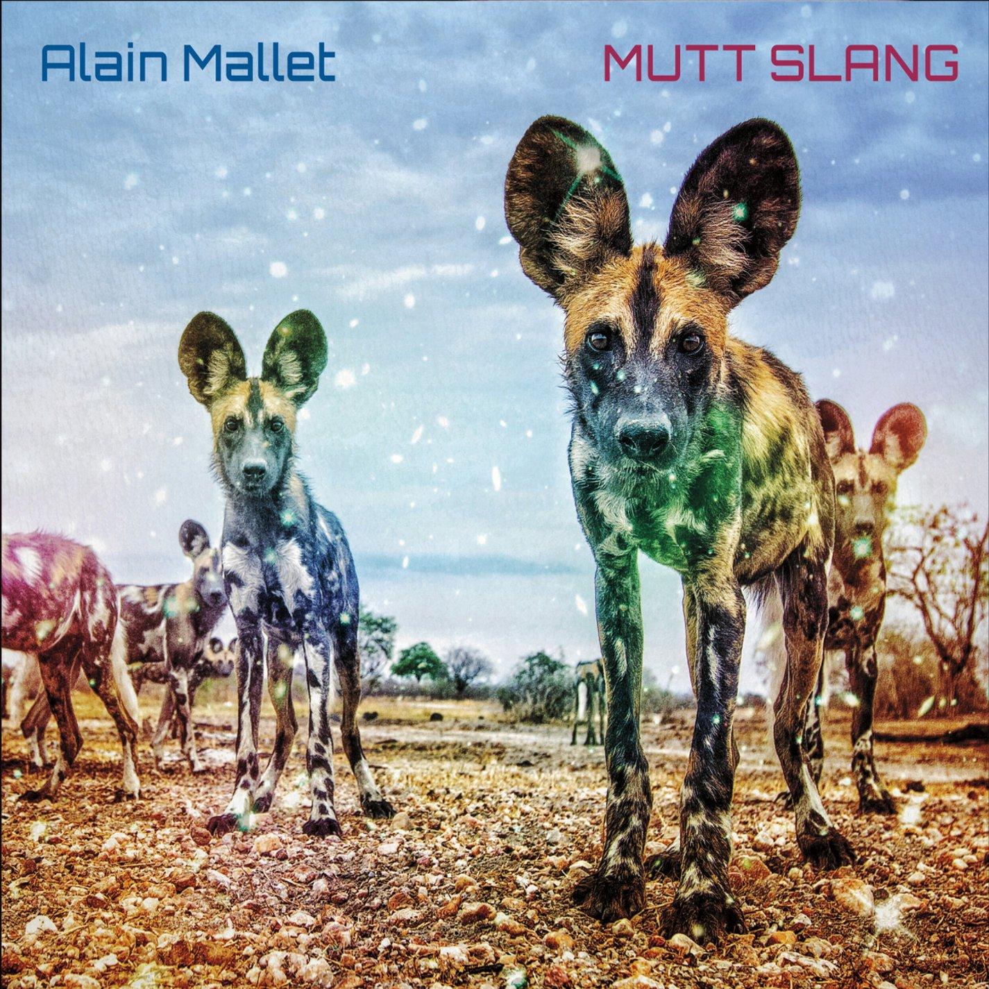 "Alain Mallet ""Mutt Slang"", 2016"