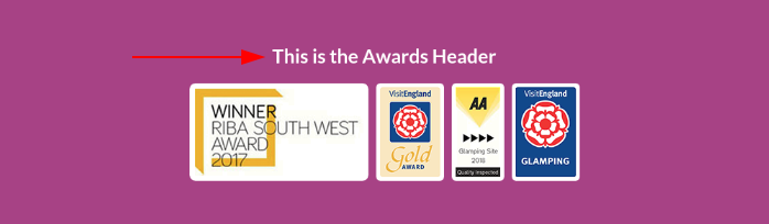 Image of the awards module header text online