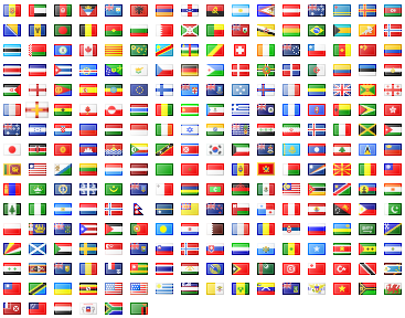 Example flag output