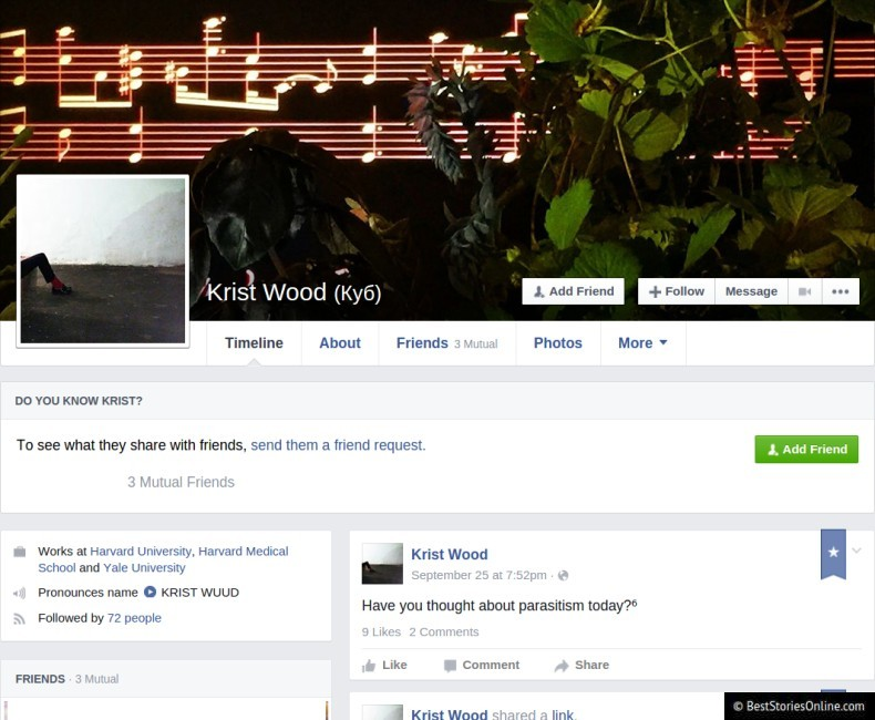 The Facebook profile of Krist Wood, a net artist.  Like many artists and writers, he has some number of followers, and many of his posts are  .