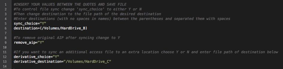 VideoAIP Example