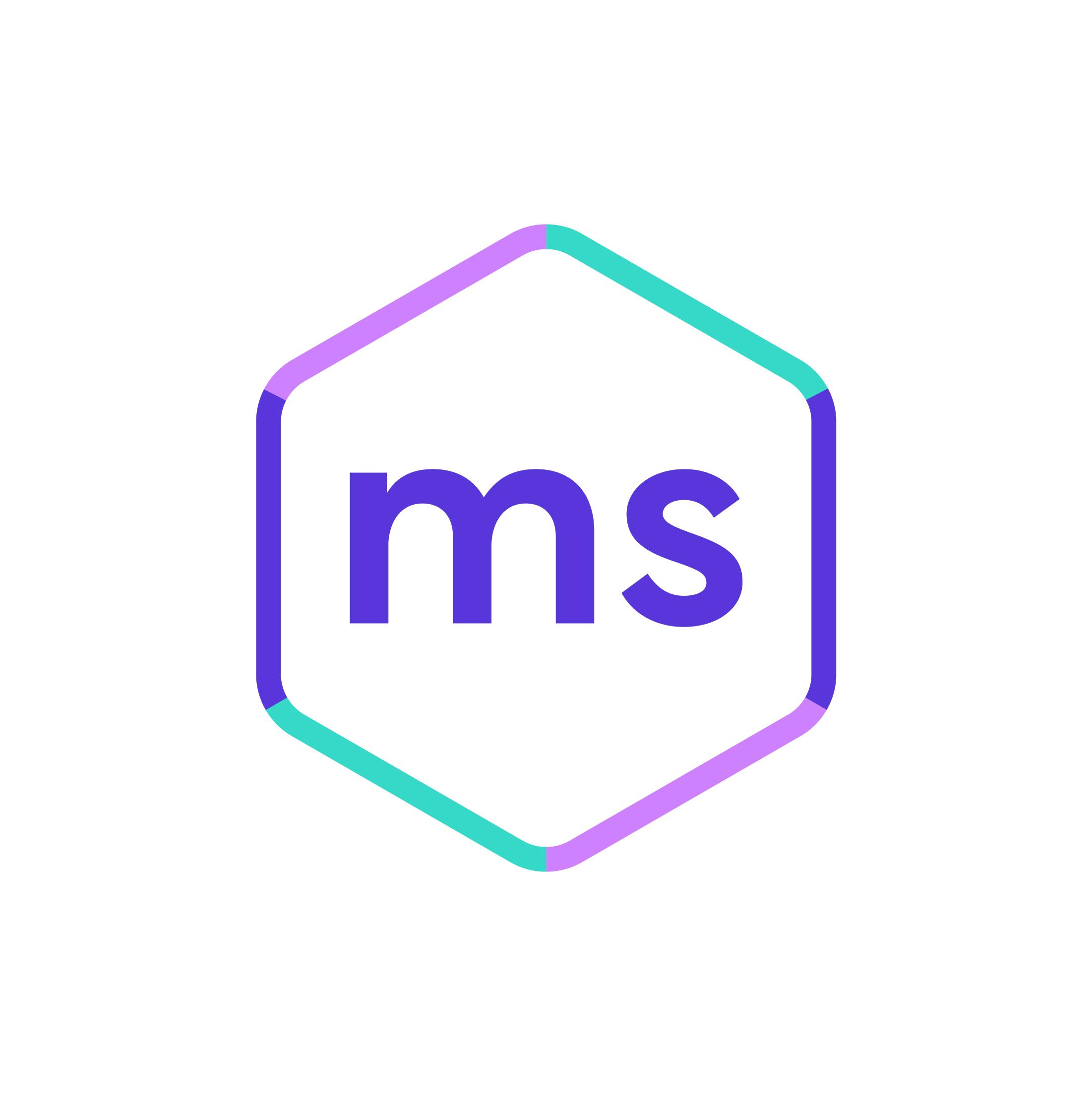 Mentored Sprints main mark