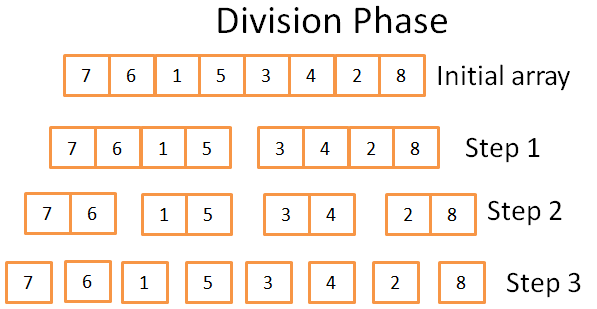 Division phase
