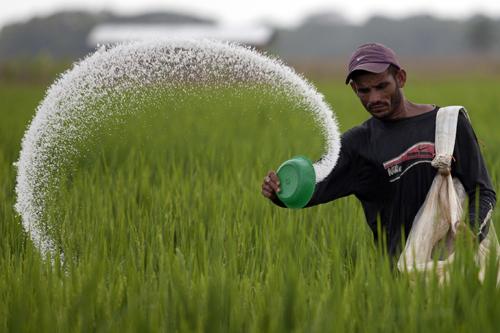 Fertilizer Lication