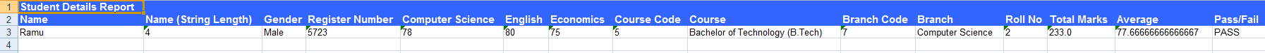 Sample Student Report (Excel)