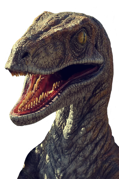 https://github.com/ralphbean/raptorizemw/raw/master/raptorizemw/resources/raptor.png
