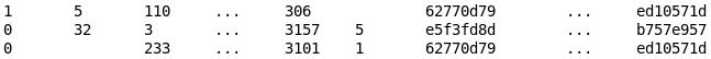 Dataset schema