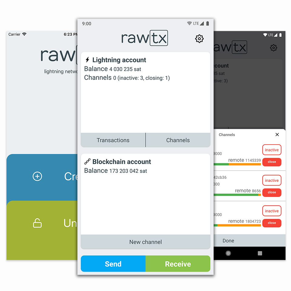 rawtx screenshot