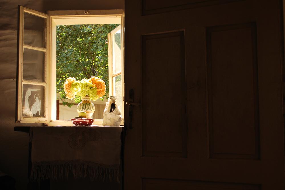 Janela panorâmica - Through the Window  (Foto: Alena Kubalcova Figurova)