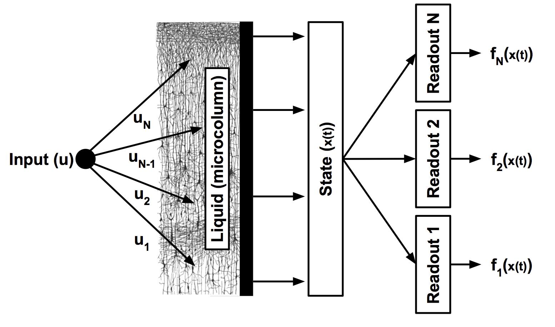 Block diagram of an LSM