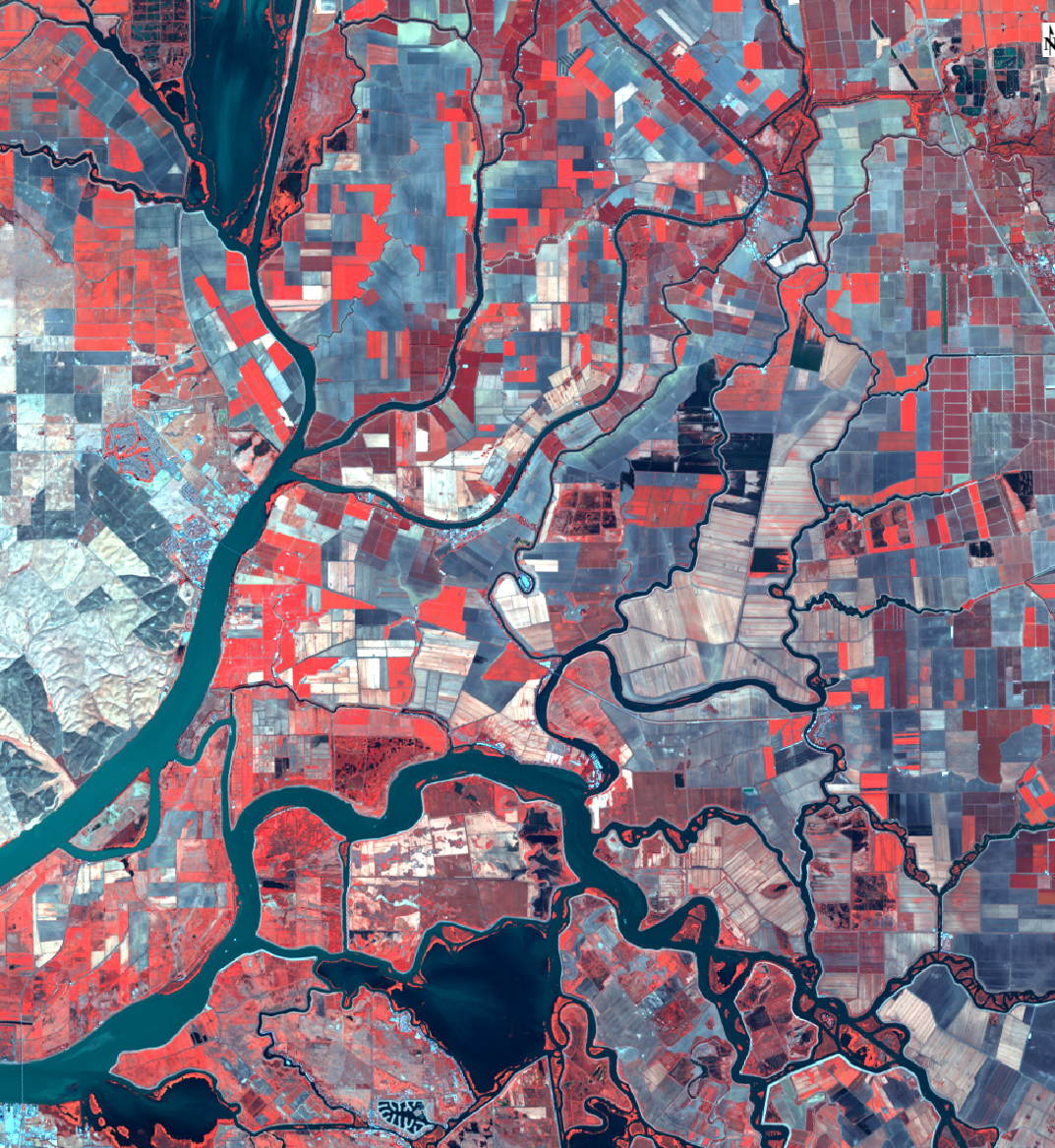 Sacramento-San Joaquin Delta, color infrared (image: R Pauloo)