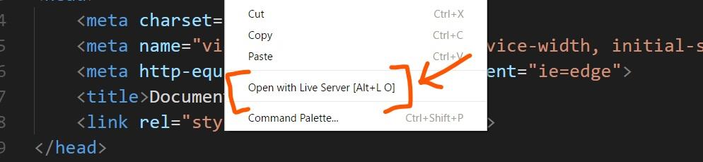 demo of live server