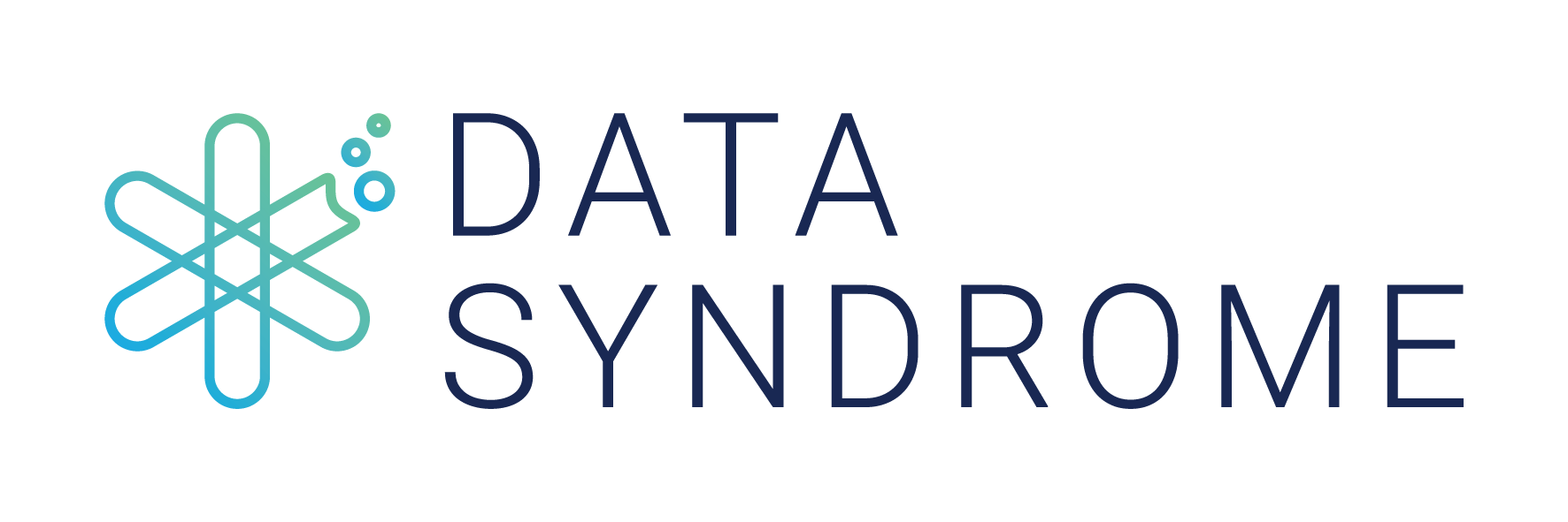 Data Syndrome Logo