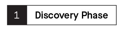 Subheader that says Discovery Phase