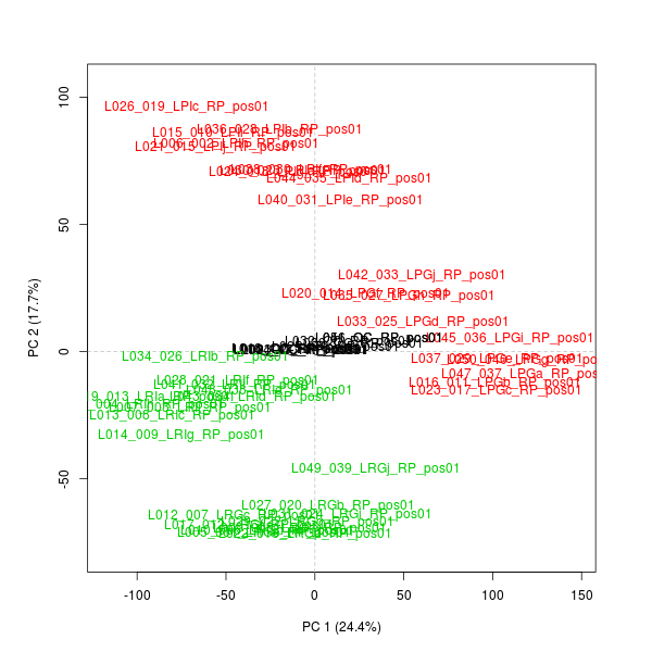 PCA plot with names