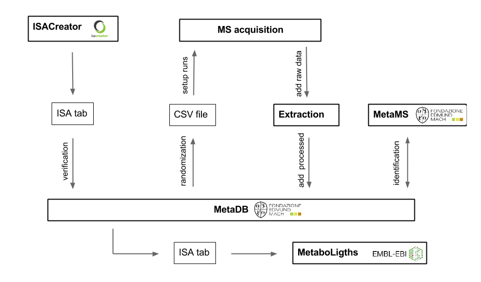 MetaDB workflow