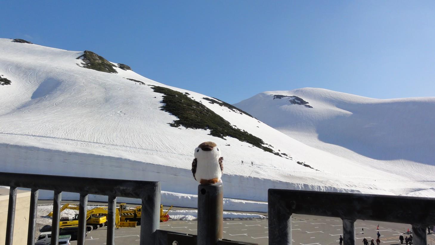 室堂站雪景