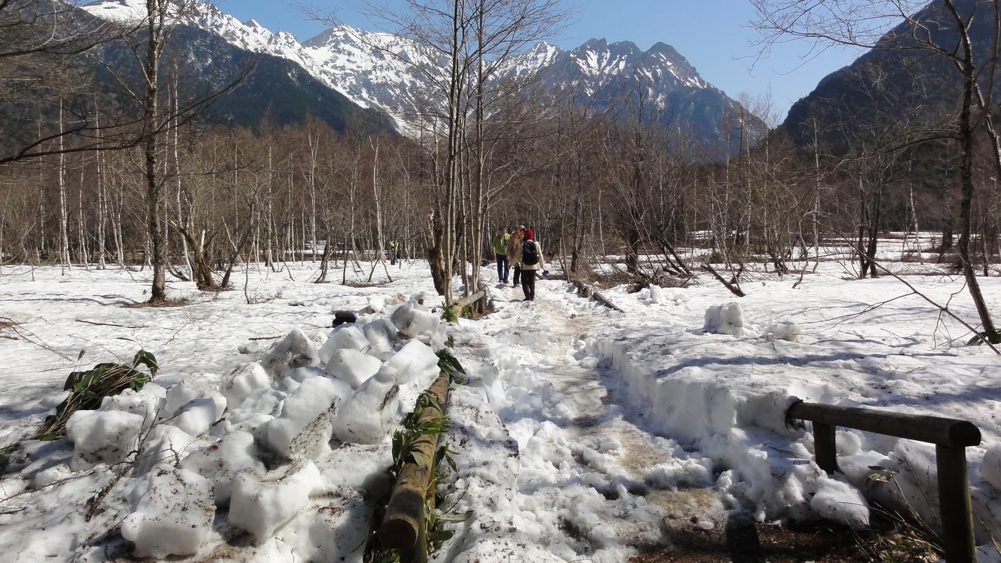 雪中的步道
