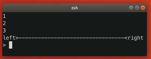 Zsh Resizing Bug 1