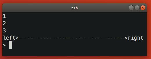 Zsh Resizing Bug 1