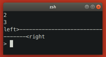 Zsh Resizing Bug 2