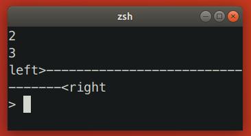 Zsh Resizing Bug 2
