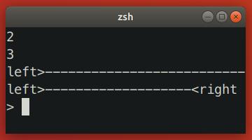 Zsh Resizing Bug 3