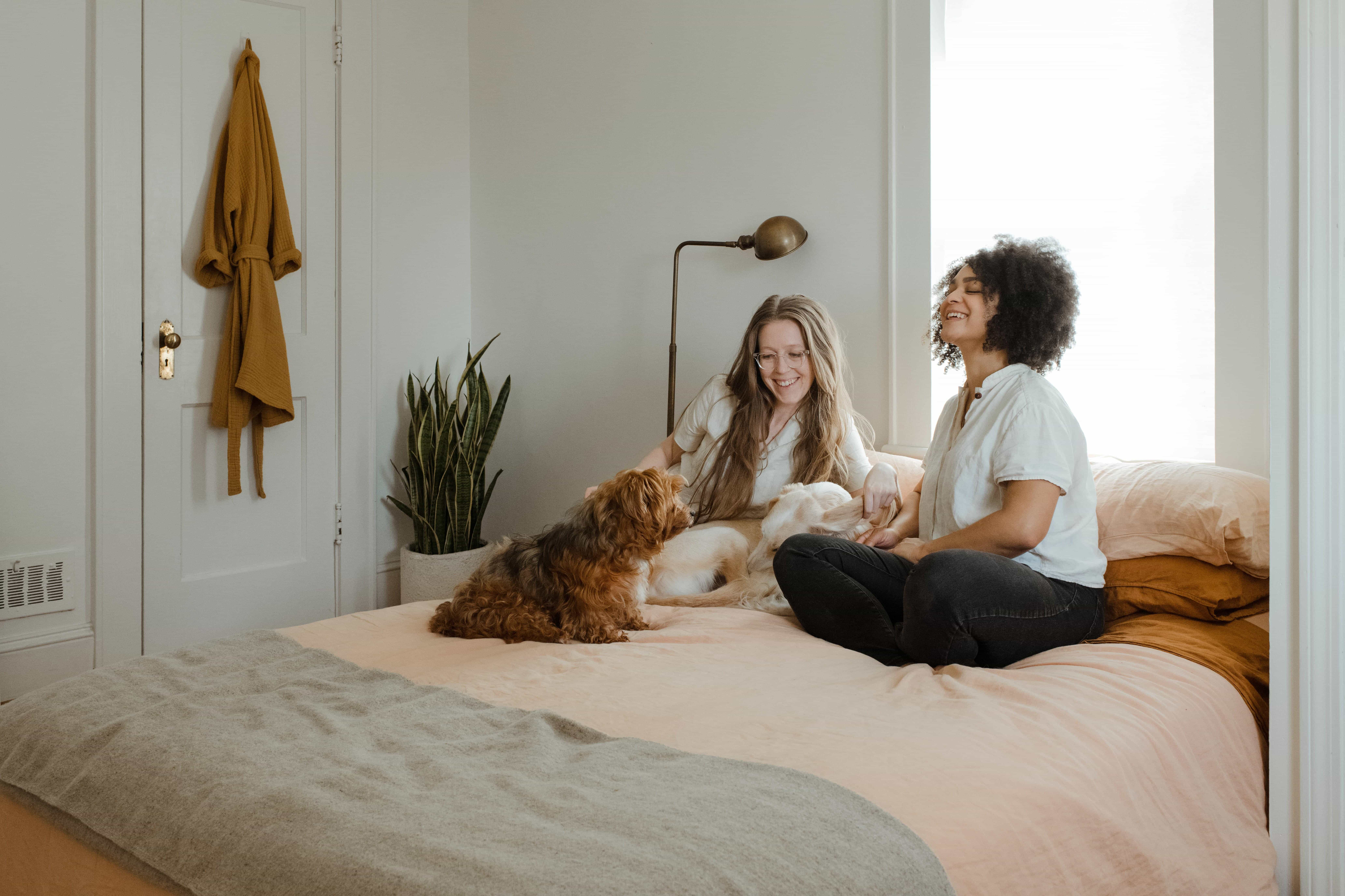 roommates-and-pets