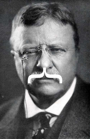 Teddy Roosevelt's facial hair is a curly brace.