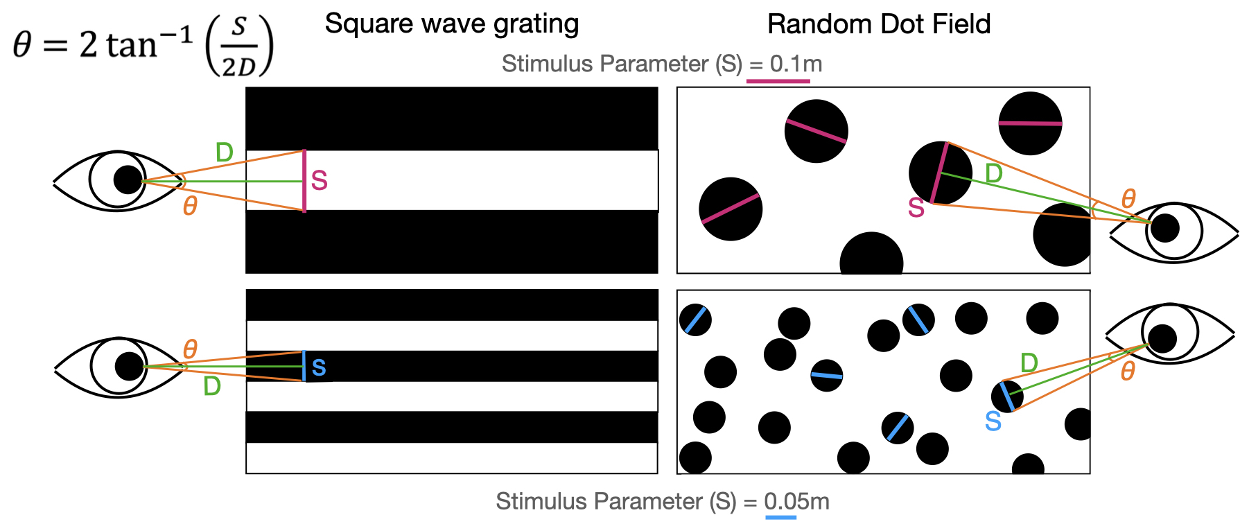 Visual angles can be calculated using the size of a visual pattern (`stim_param`) and the distance to the pattern. Larger patterns at shorter distances produce larger visual angles. For dot stimuli, visual angles can be calculated independent of stimulus orientation.