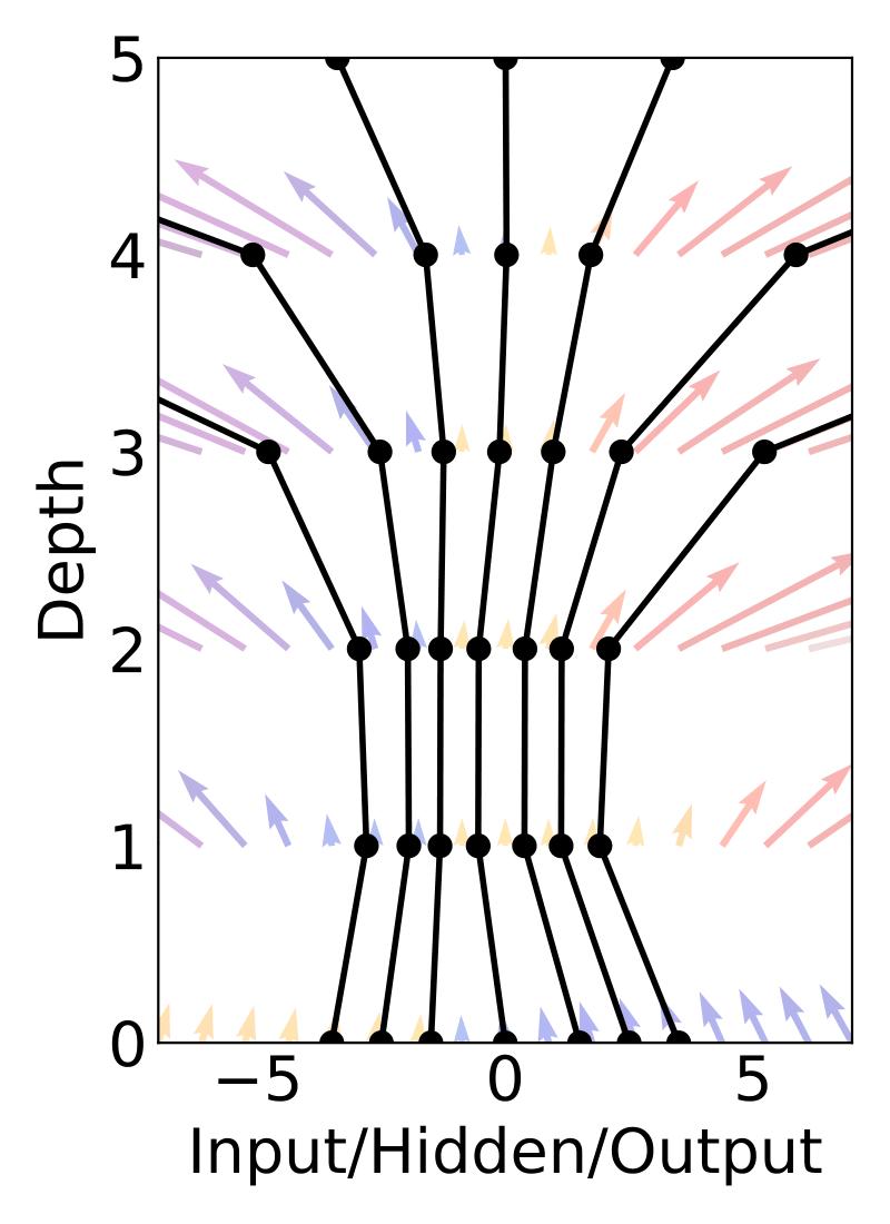 Discrete-depth network
