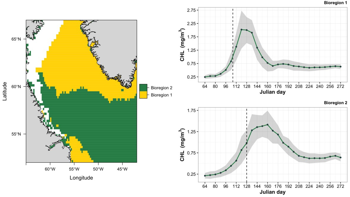 Using R and satellite data to identify marine bioregions