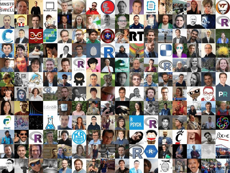 Faces of #rstats Twitter