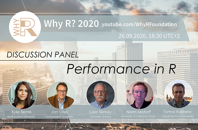 Why R 2020 Discussion Panel - Performance in R