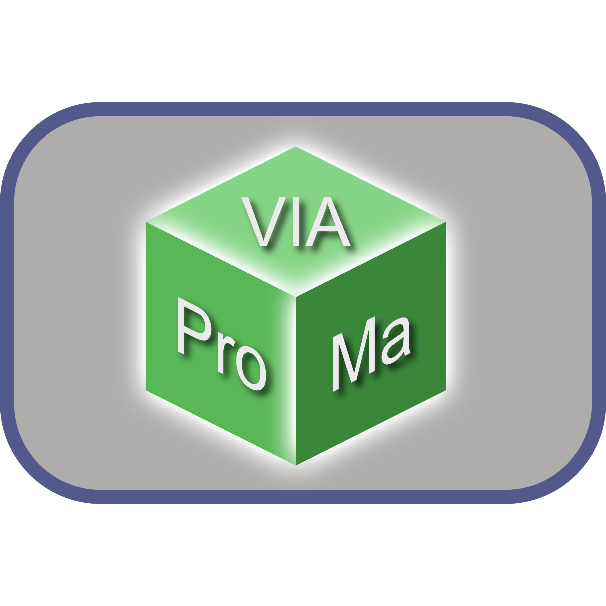 VIAProMa Logo