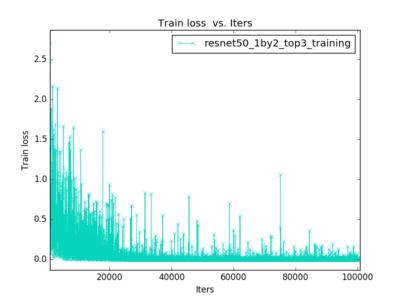 fine-tuning training loss