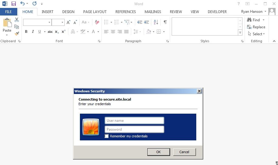 Basic Auth Dialog in Word