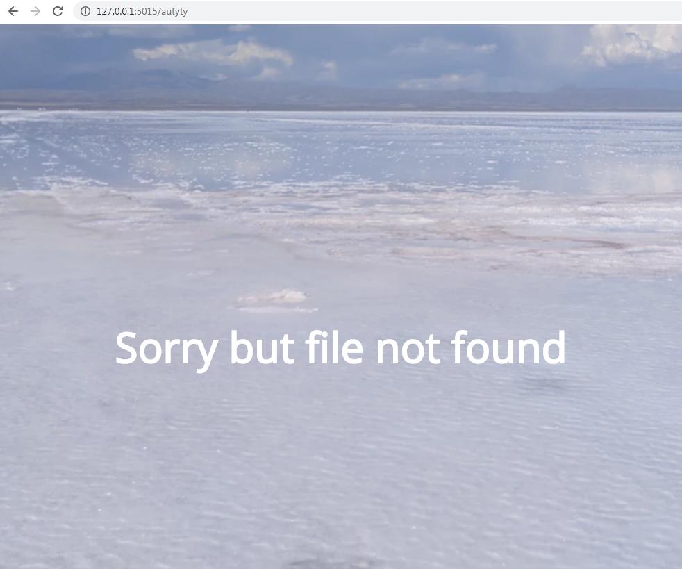 Server-side 404 error page