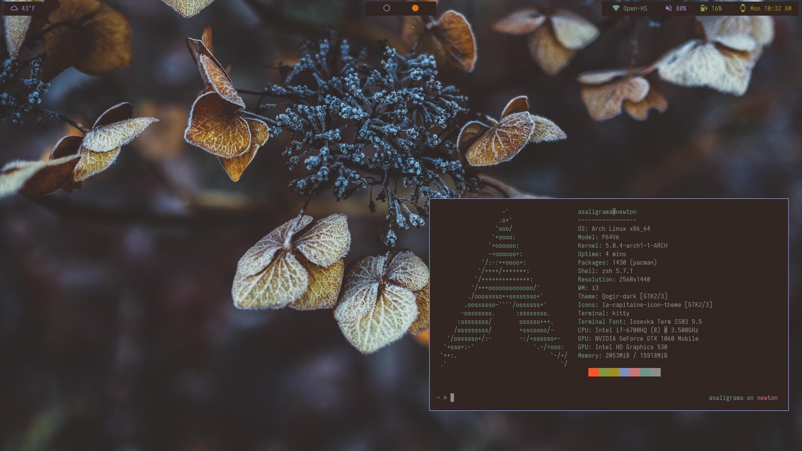 GitHub - saligrama/dotfiles: Dotfiles for my Arch/i3 setup