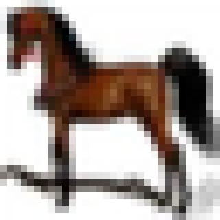 horse_scaled