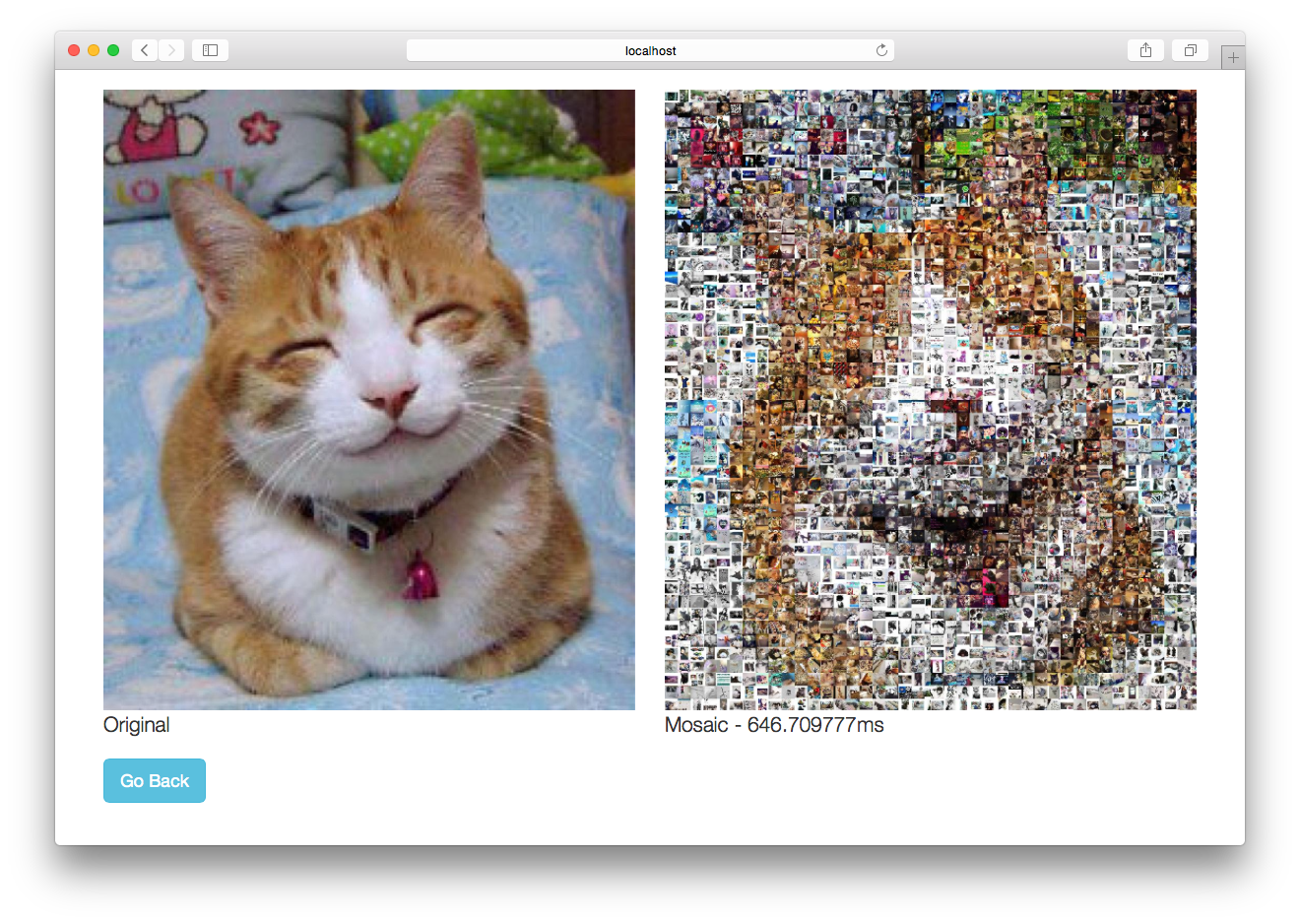 Figure 4 – Photo mosaic web application with concurrency