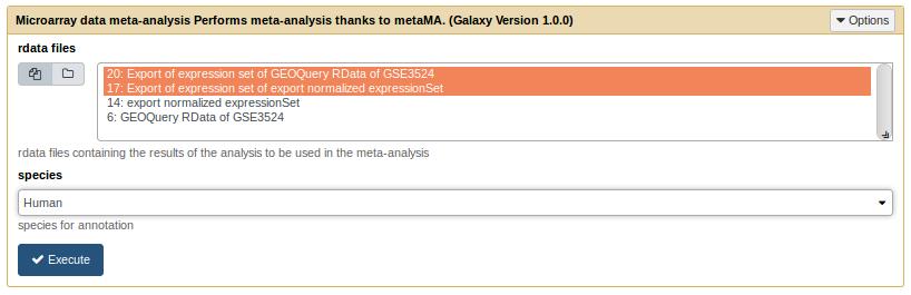 MetaMA tool form
